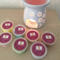 My little collection of soy melts - Lolly Shoppe is in the burner and it smells AMAZING!
